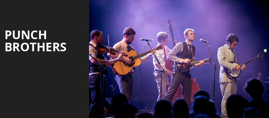 Punch Brothers, Oregon Zoo Summer Concerts, Portland