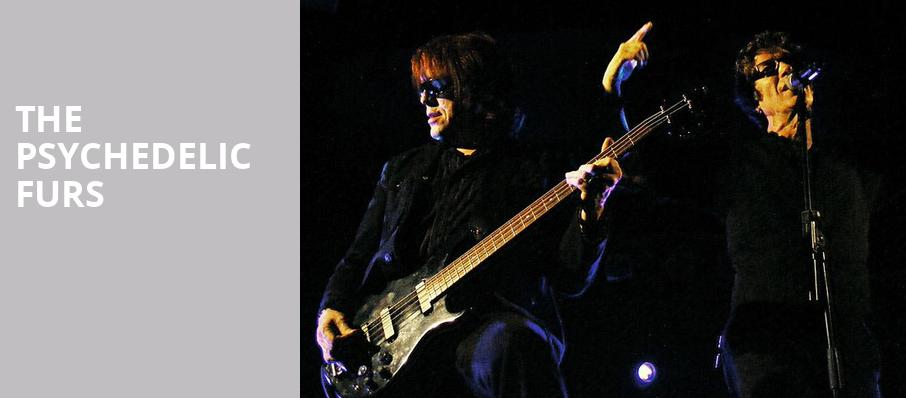 The Psychedelic Furs, Oregon Zoo Summer Concerts, Portland