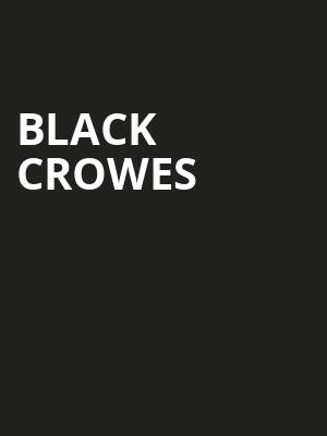 Black Crowes Poster